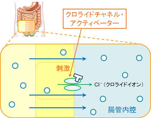 アミティーザ アミティーザは酸化マグネシウムの代替薬に最適?メリットと注意点を解説! KusuriPro