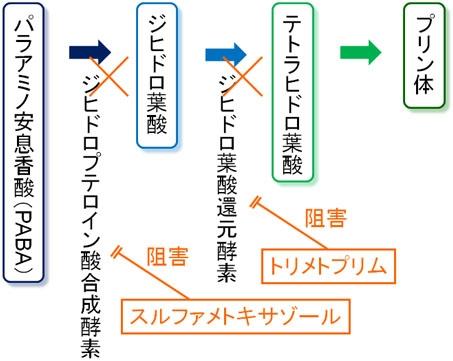 St 合 剤 第1節 界面の相互作用と接着性・密着性,耐久性の向上