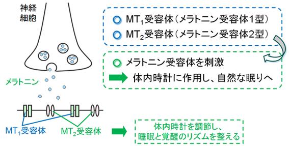 https://kusuri-jouhou.com/medi/img/sleep-a1.jpg